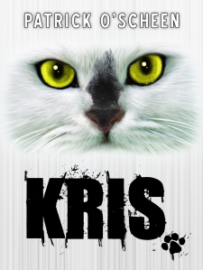 cover kris for kindle